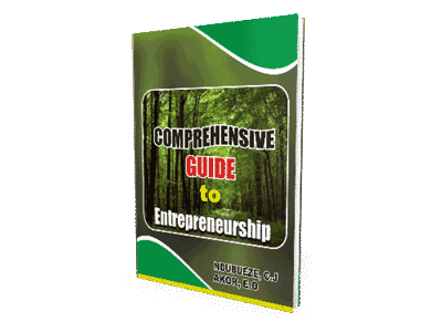 comprehensive guide to entrepreneurship